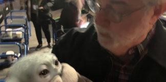 Star Wars: George Lucas incontra Baby Yoda