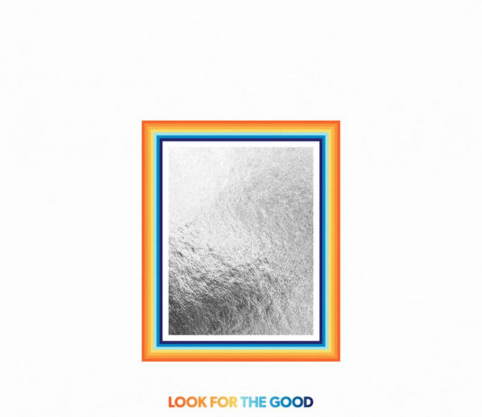Copertina Looking for the Good
