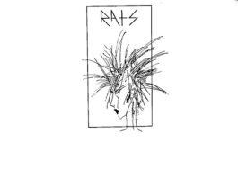 Primo disco dei Rats