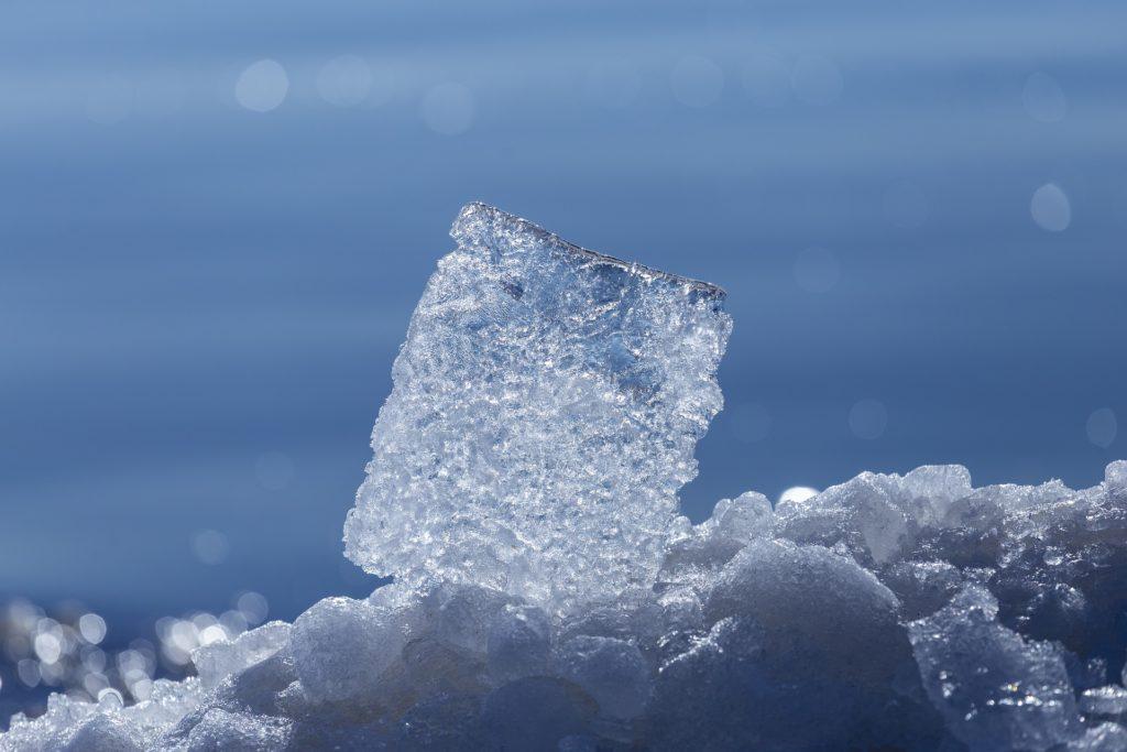 la cultura del silenzio ghiaccio
