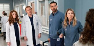 Grey's Anatomy 17: sarà l'ultima?